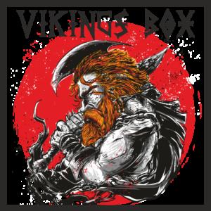 Vikings boox