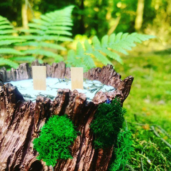 Leśna Magia2